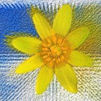 flowerk4k
